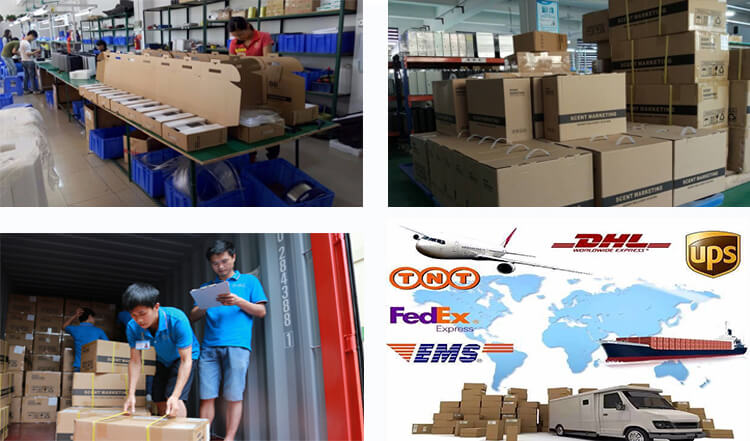 Packing and Shipping of Scenta Team